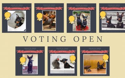 VOTE CLOSED: ETT Photo Competition 2020