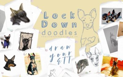 Last Call: Lockdown Doodles
